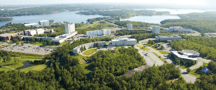 Laurentian University в Канаде