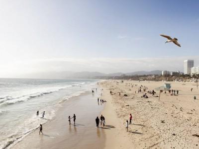 Курсы английского языка ЕС в Лос-Анджелесе - Досуг