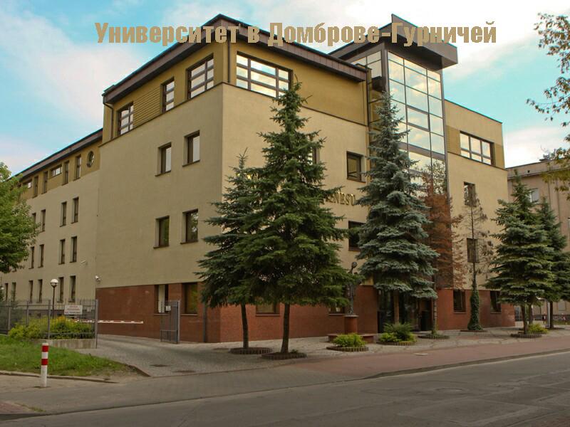 Высшая школа бизнеса в Домброве-Гурничей