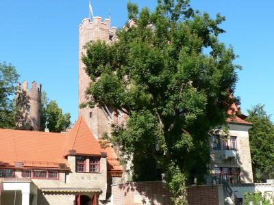 Летние языковые лагеря в Германии - Munich Castle