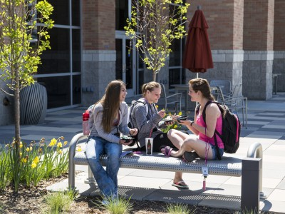 Sheridan College в Онтарио - Проживание